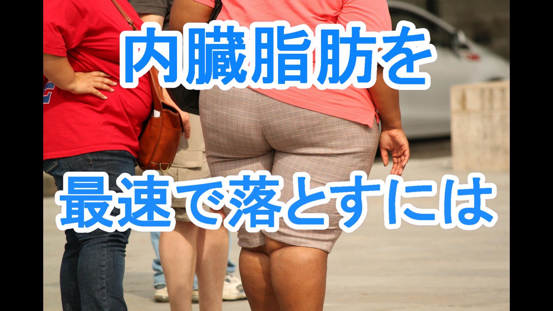 内臓脂肪を最速で落とす